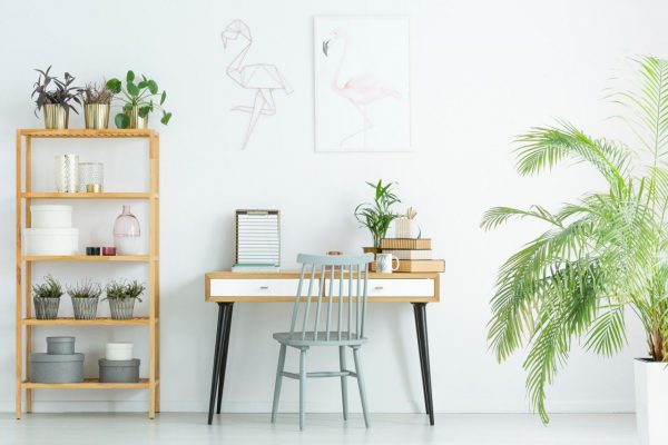 Grey chair at desk against white wall with poster in home office with plants on wooden shelves