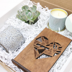 With Love Succulent Box